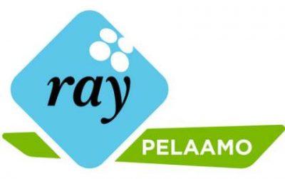 RAY_pelaamo_logo_RGB